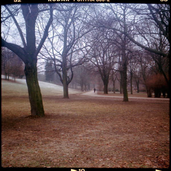 volkspark, prenzlauer berg, c-print, bilder, belrin - Pieces of Berlin - Collection - Blog