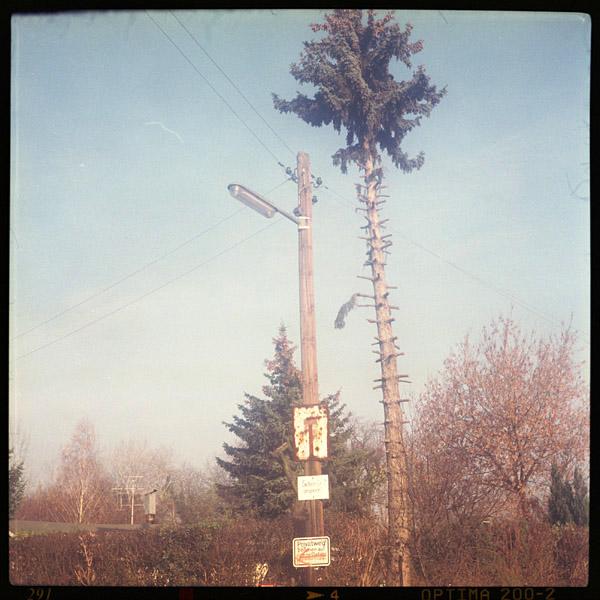 treptow, c-print, bilder - Pieces of Berlin - Book and Blog