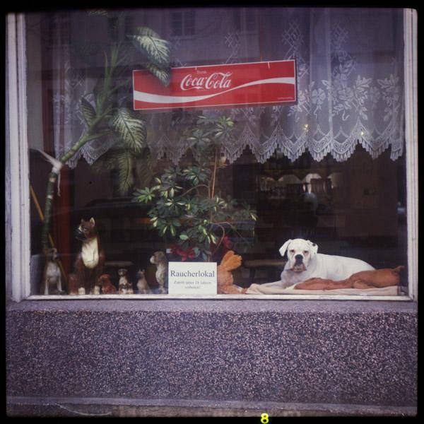 Neukölln, Kneipe, Berlin, Hund