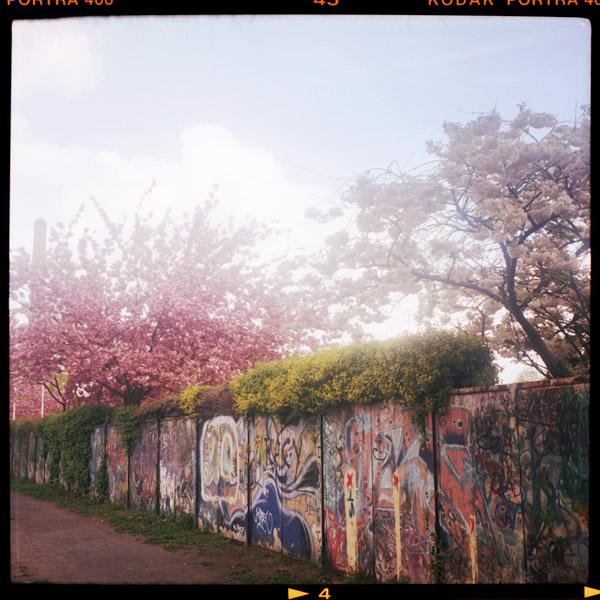 neukölln, kitsch, kirschblüten - Pieces of Berlin - Book and Blog